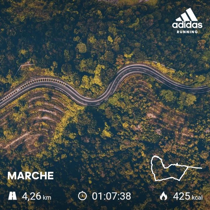 Petite promenade (4.26km) dominicale dans la forêt privée de Beaumont-Le-Roger